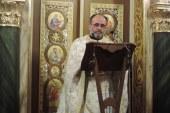 «Εν δράσει 2017»: π. Ελευθέριος Χρυσοχόος (video)